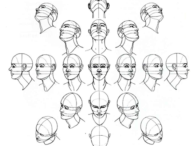 How To Draw The Human Head 1