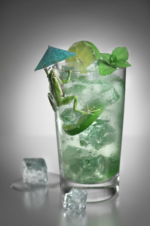 manuel-peter-cocktail